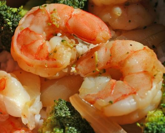 Stunning Shrimp!